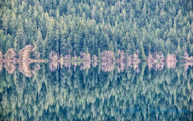 Reflecting on Lake Crescent, Olympic National Park, Washington