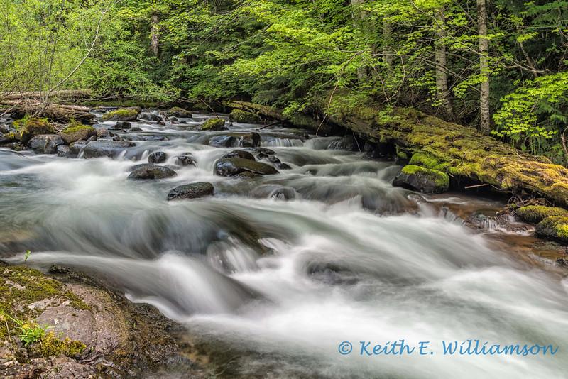 East Canyon Creek, Washington