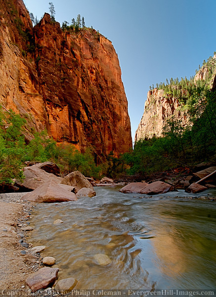 Canyon View, Zion National Park