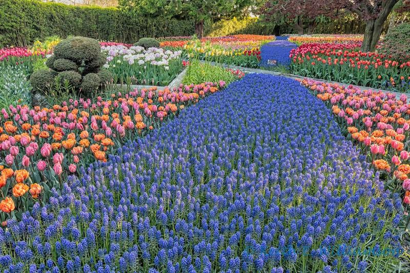 flower garden, RoozenGaarde