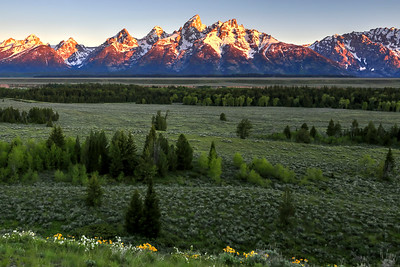 Jackson Hole Sunrise over the three Tetons