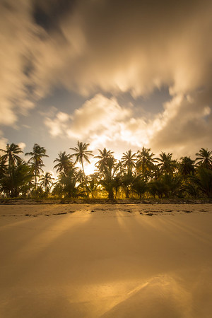 Golden Playa. Playa Rincon, Samana Peninsula, Dominican Republic