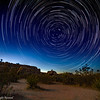 Star Trails in Joshua Tree National Park