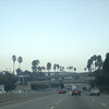 on the 101