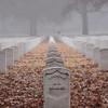 Unkown. National Cemetery. Memphis, TN