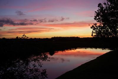 Evening, Pembroke Pines, Fla., Dec. 14, 2015.