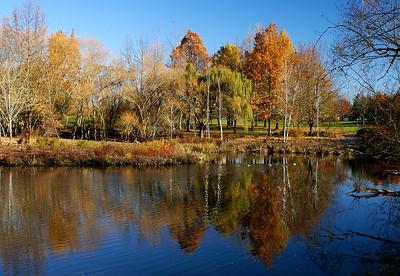 Dawson Creek Park, Hillsboro, OR Nov 21, 2005