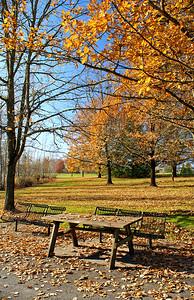 Dawson Creek Park, Hillsboro, OR November 21, 2005