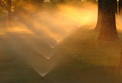 evening sprinklers Dawson Creek Park, Hillsboro, OR August 11, 2005