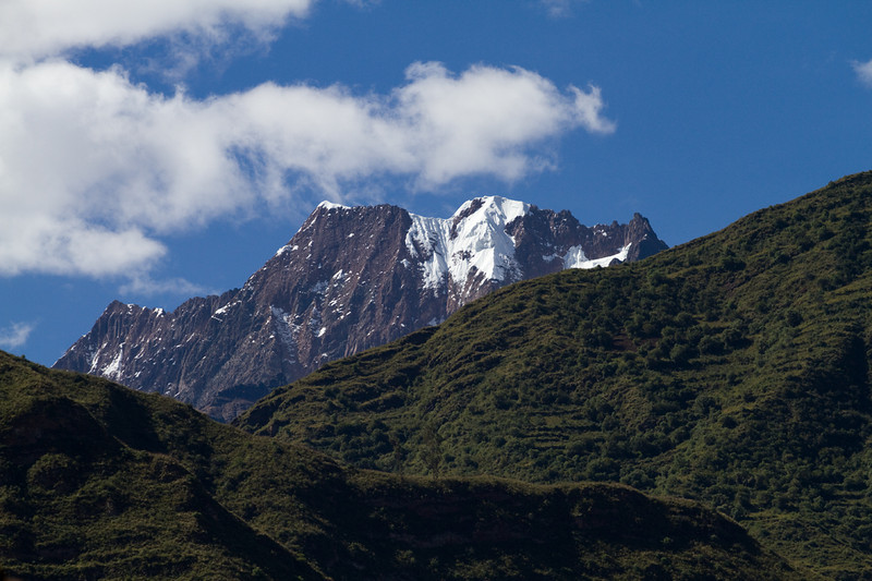 Carpets of green up in the Andes - Peru