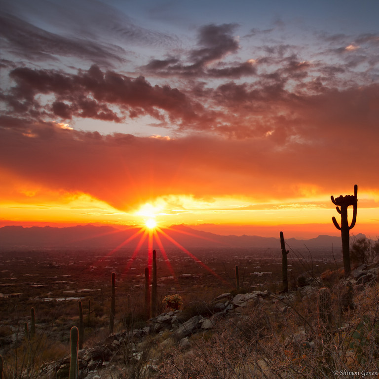 Tucson Sunset, Arizona