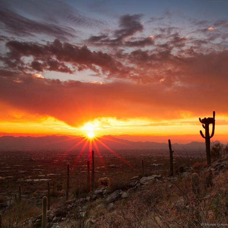 Tucson Sunset, Arizona