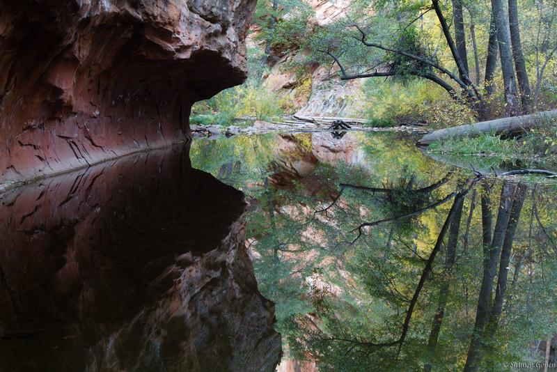Reflections - West fork creek, Sedona