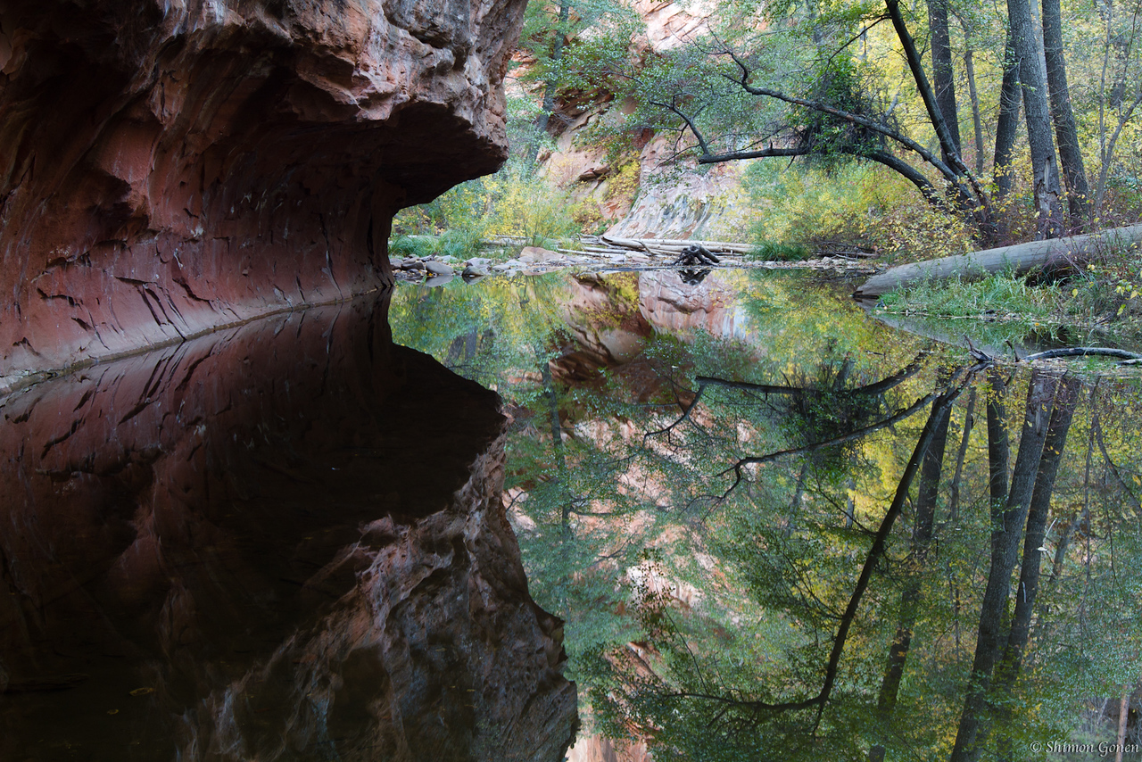 Reflections - West fork creek, Sedona