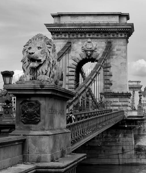Chain Bridge - Budapest, Hungary