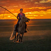 "A nomad demonstrating his horsemanship in the setting sun, using a lariat of a different kind to ""rope""  horse and sheep...Mongolia"