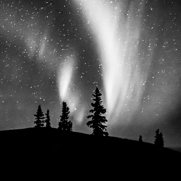 Aurora In Monochrome
