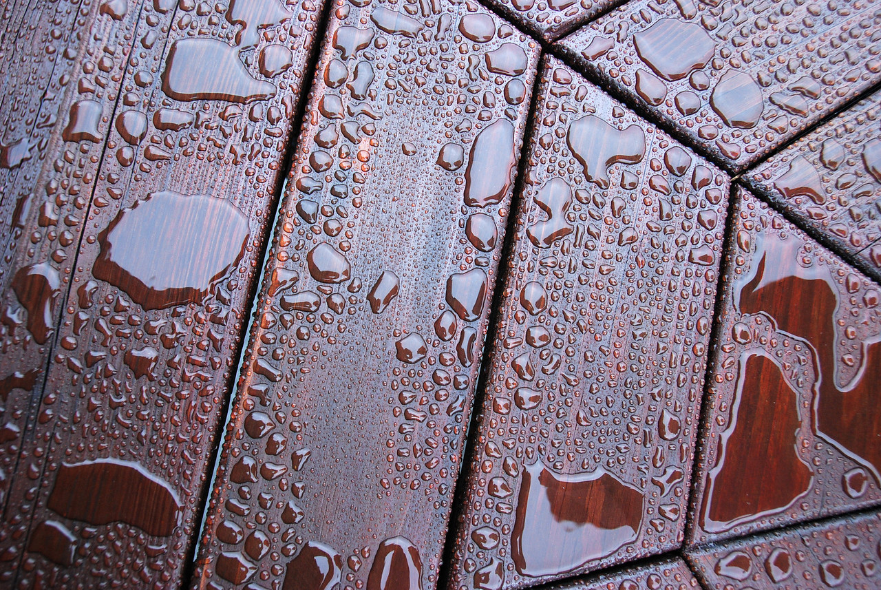 Picnic Table after the Rain (Annapolis, 2008).