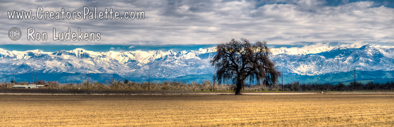 Snow covered Sierra Nevada Mountains