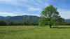 Cades Cove, Great Smoky Mountains
