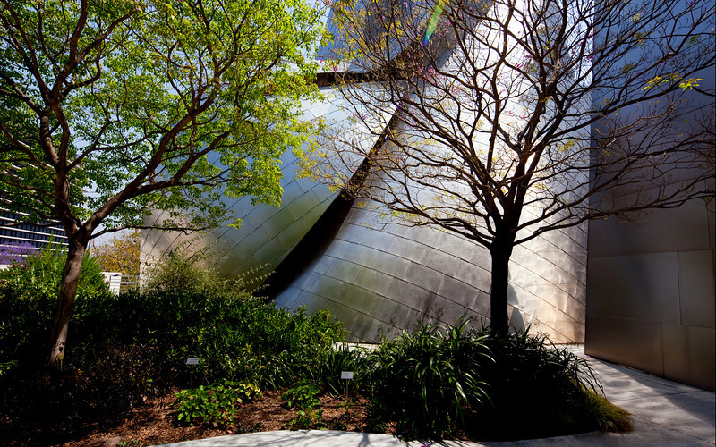 Walt Disney Hall, designed by Frank Gehry. My favourite building in L. A.