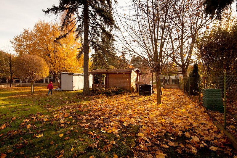 Pomezek v Klánovicích na podzim
