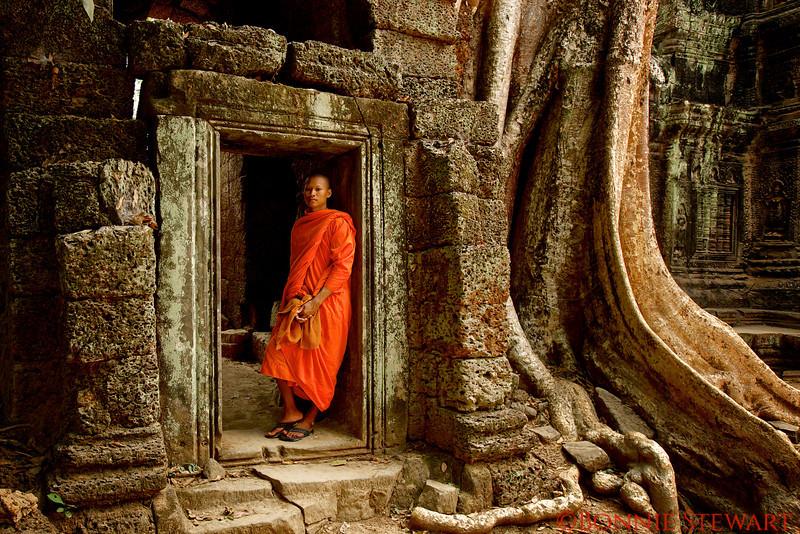 Monk in Ta Prohm Temple
