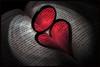 Hoya Heart