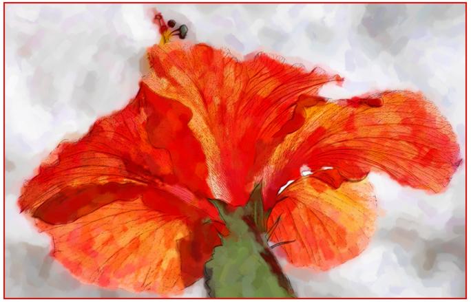B-Karen Kulengowski-Watercolor Hibiscus