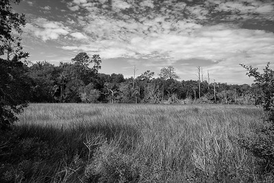 Timucuan Ecological and Historic Preserve, Jacksonville, Florida