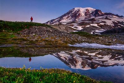 A lone hiker soaks in Mt Rainier at dawn, Washington