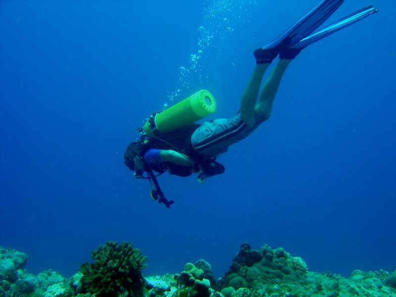 Diver hovering above coral, Agfayan Bay, Guam