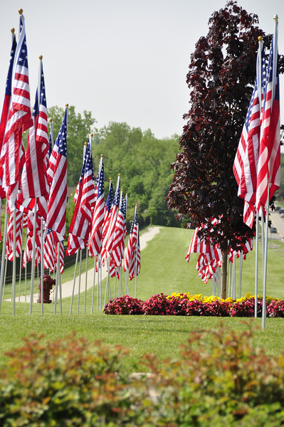 American Flags, Rochester Hills, MI