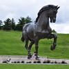 Hiding behind the horse, Frederik Meijer Gardens, Grand Rapids, MI