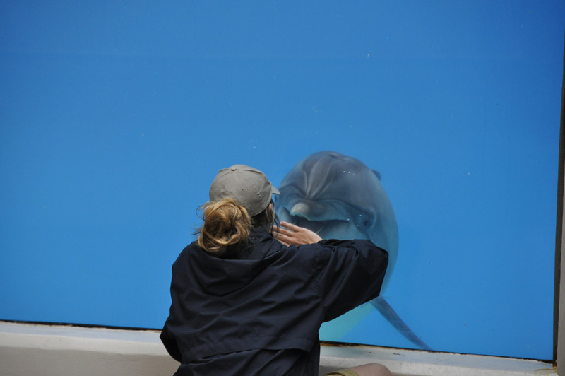 Making Friends, Marineland, Niagra Falls