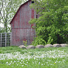 Old Barn, near Lexington, MI