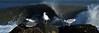 Gulls & Surfer Pano crop 6x18 DSCF6993