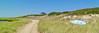 Dune Trail  & Boat  Pano 6x18@300@5000 DSCF2897
