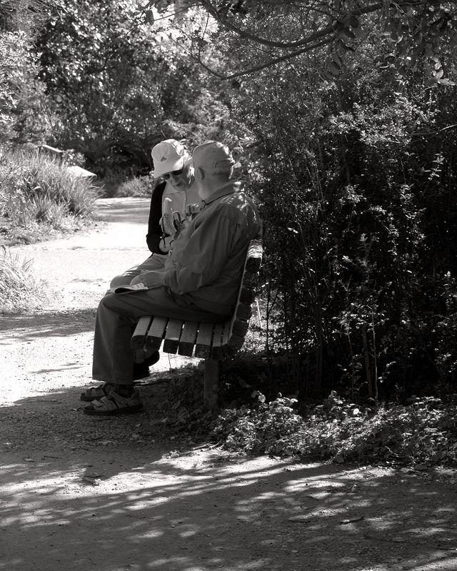 A couple sharing a banana at Golden Gate Park