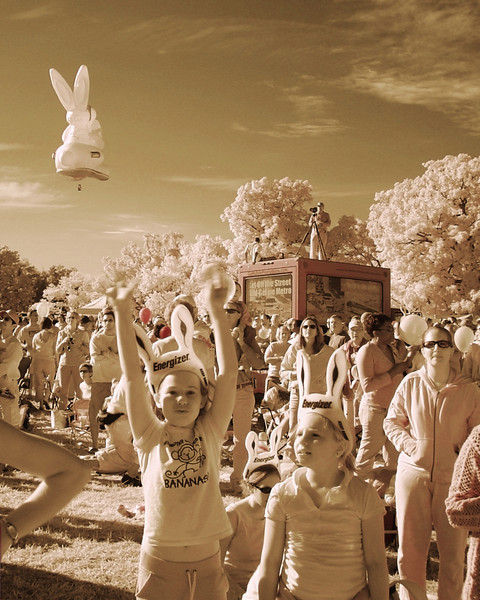 Infrared Bunny Girls 8x10