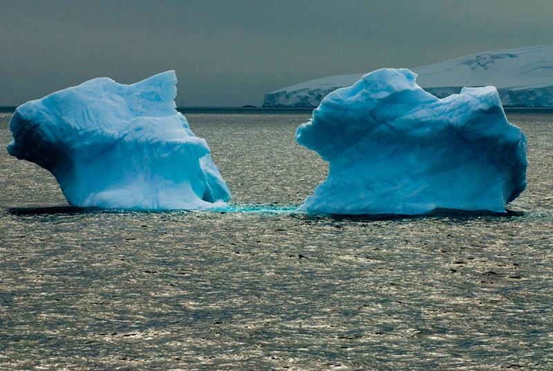 Iceberg Reflections in Gerlache Strait