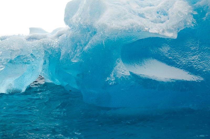 Cruising among the Icerbergs