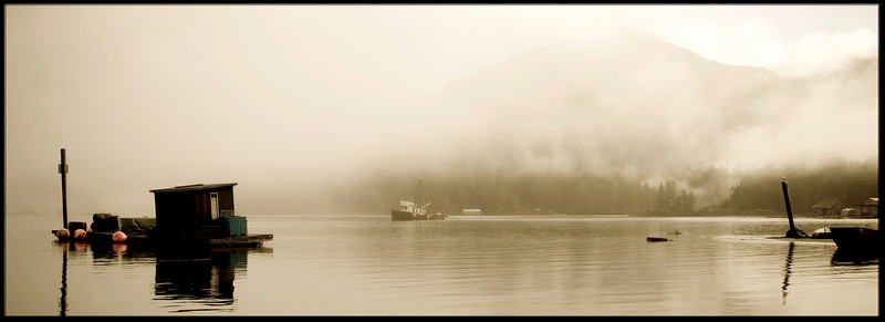 March 2008 - Browning Passage - Tofino, Vancouver Island, British Columbia