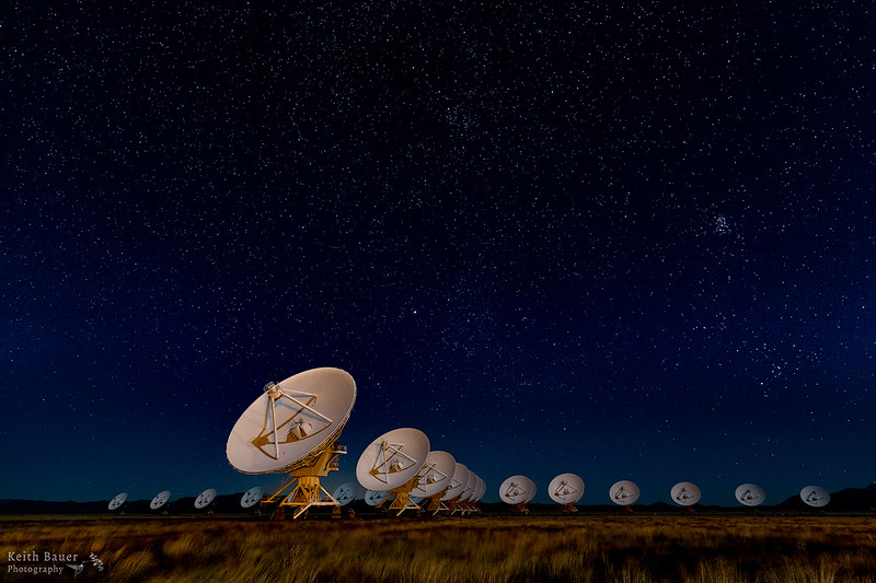 VLA  under the moon light