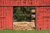3-30-08-224Red Barn 2