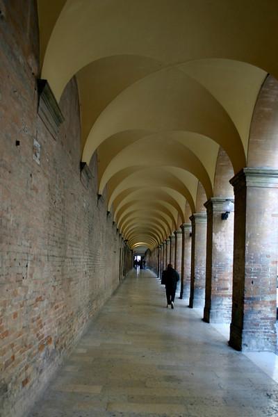 Long, Long Walk- Tuscany, Italy
