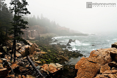 Thunder Hole area in Acadia National Park (Mount Desert Island, Maine)
