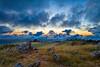 Monte Bello Sunset 1