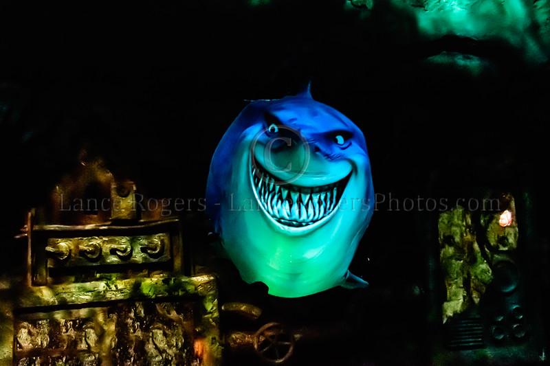 Fish are Friends - Walt Disney World