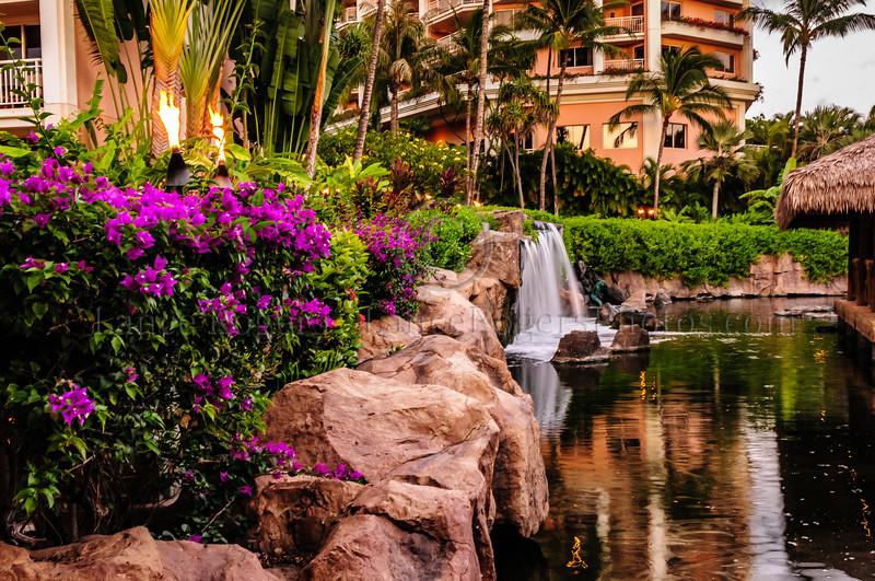 Hawaii2014_1309